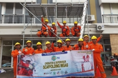 scaffolding migas 01